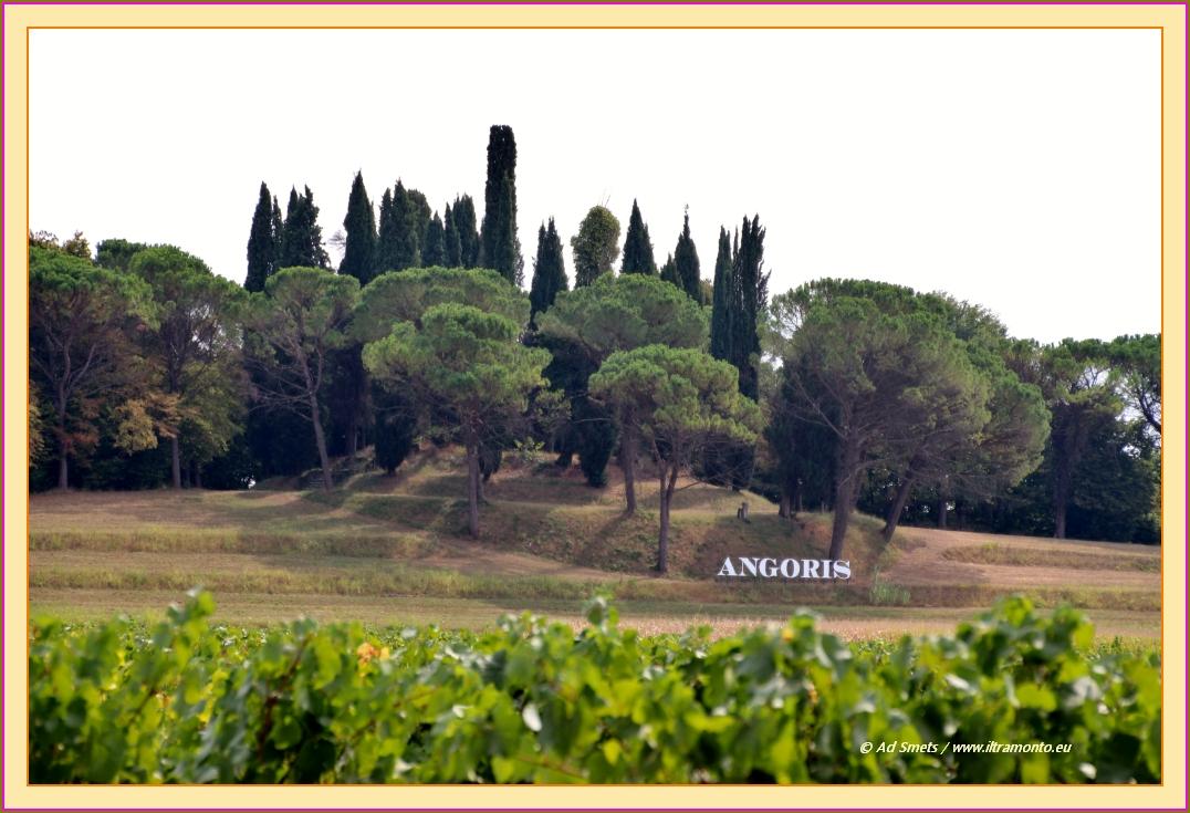 angoris_2305_il-tramonto-wines