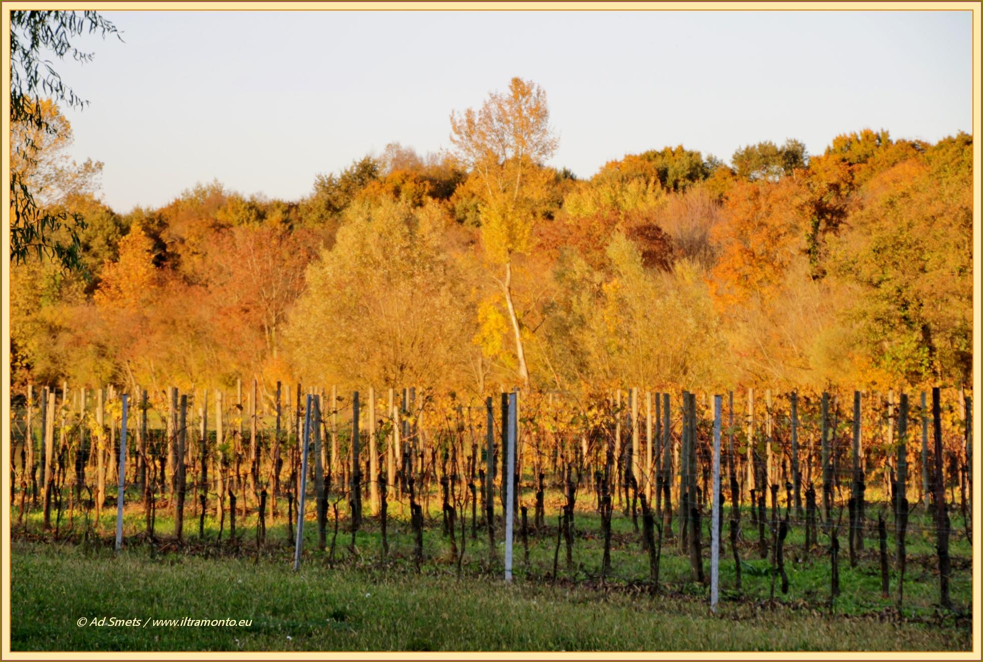 herfst_9246_il-tramonto