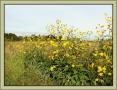 bella-italia_foto-ad-smets_08753