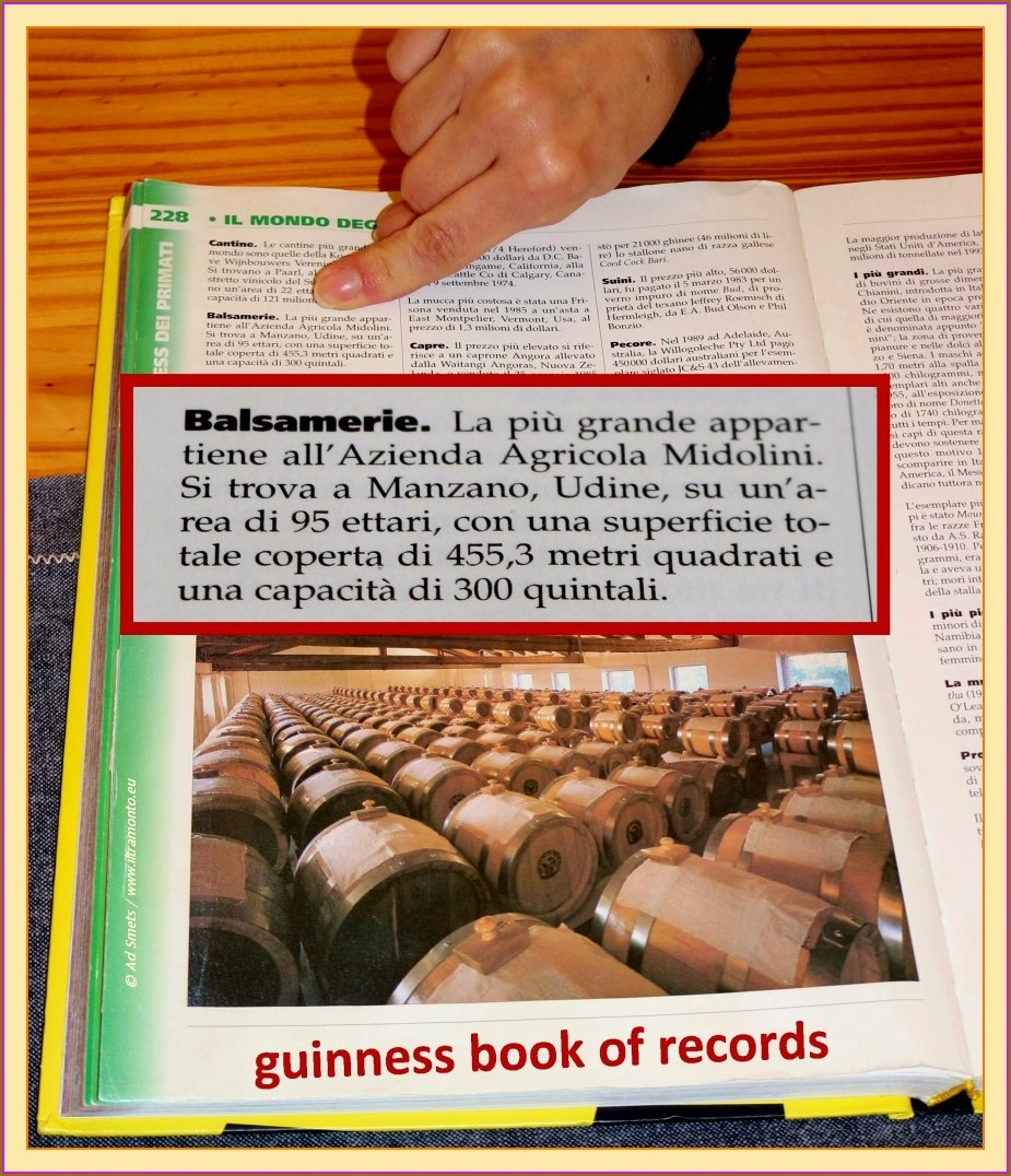 midolini_7667_guinness-book-of-records