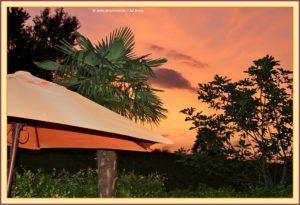 huis van oranje_9256
